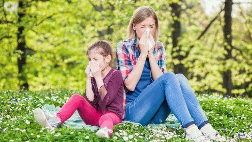 Насморк, плохое самочувствие и многое другое может вызвать сезонная аллергия. Цветы и прочие аллергены всегда по-разному воздействуют на здоровье. Лечимся!
