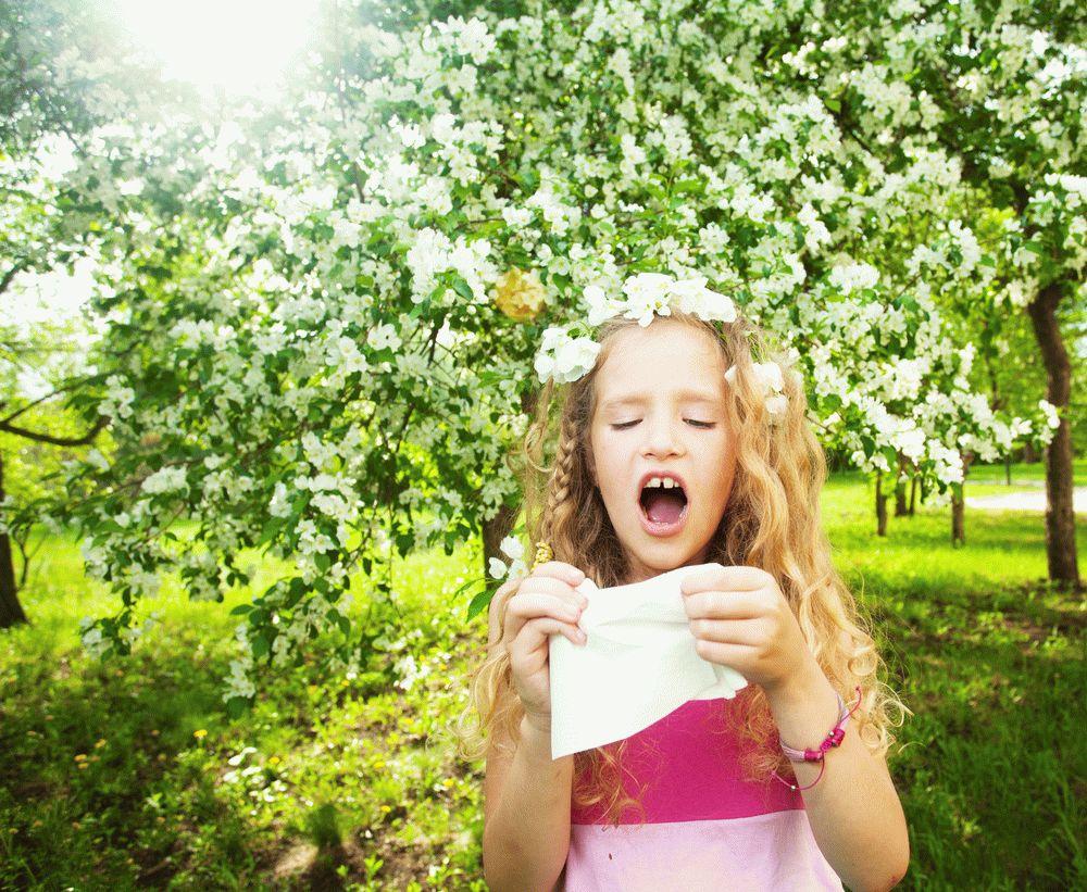 Аллергический ринит. Как бороться если столкнулся. Профилактика и лечение ринита у детей. Полезные советы для мам и пап, чтобы сохранить здоровье ребенка