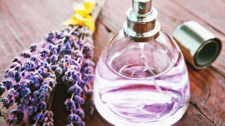 Флакон и духи - какая связь? Флаконы от Коко Шанель и Miss Dior - в чем их секрет. Все что вы должны знать при выборе тех или иных парфюмов.